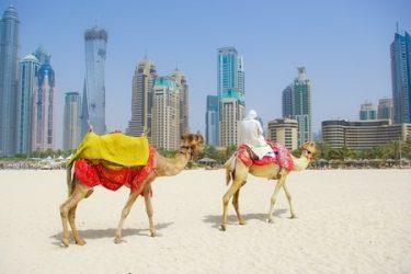 Pyramis Intenational Dubai - Abu Dabi