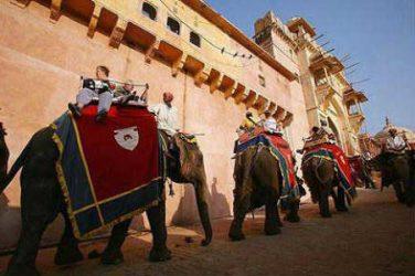Pyramis Intenational India