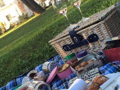 Domotel Kastri picnic