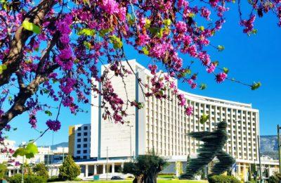 Hilton_Spring